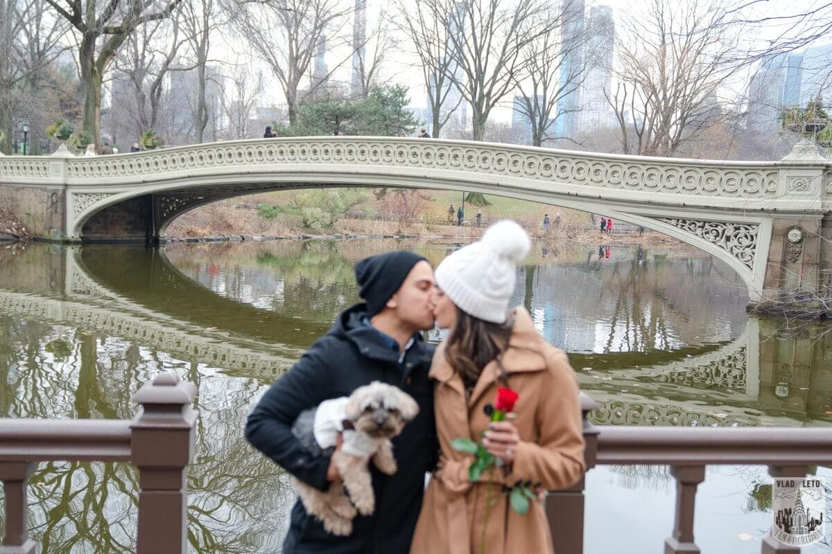 Photo 9 Central Park Marriage Proposal by Bow Bridge. | VladLeto