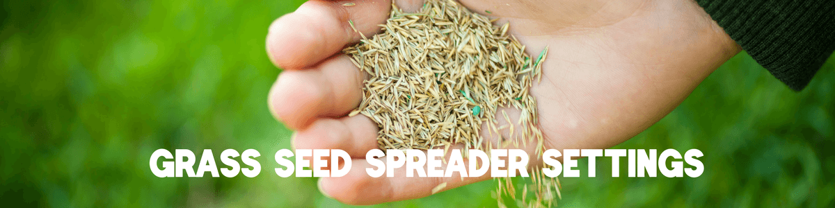 Grass Seed Spreader Settings
