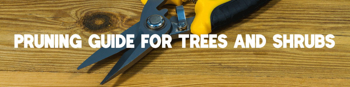 Pruning Guide For Trees and Shrubs