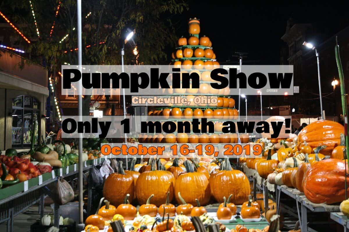One Month Until Start of 2019 Pumpkin Show