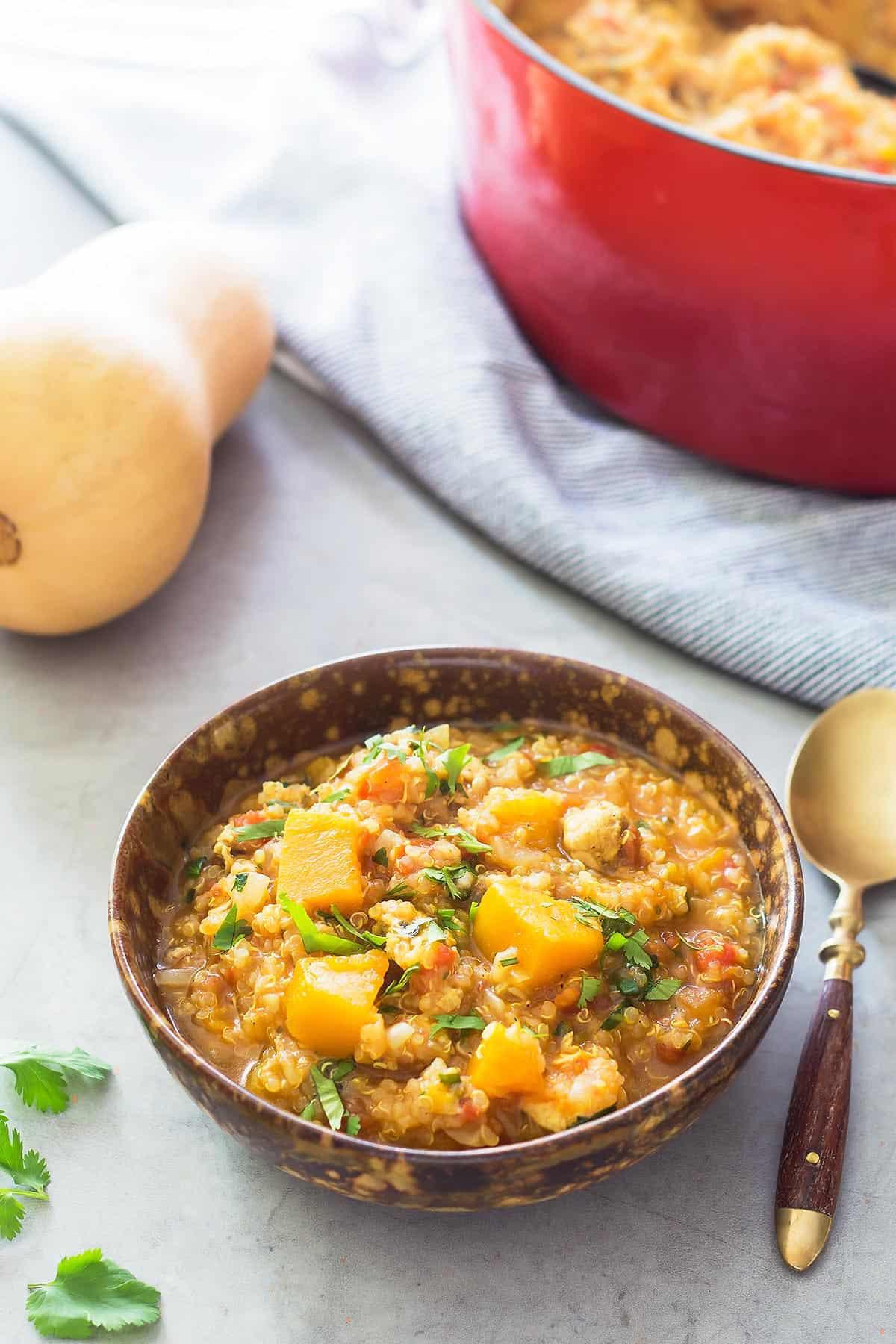 Instant Pot Chicken Squash Stew