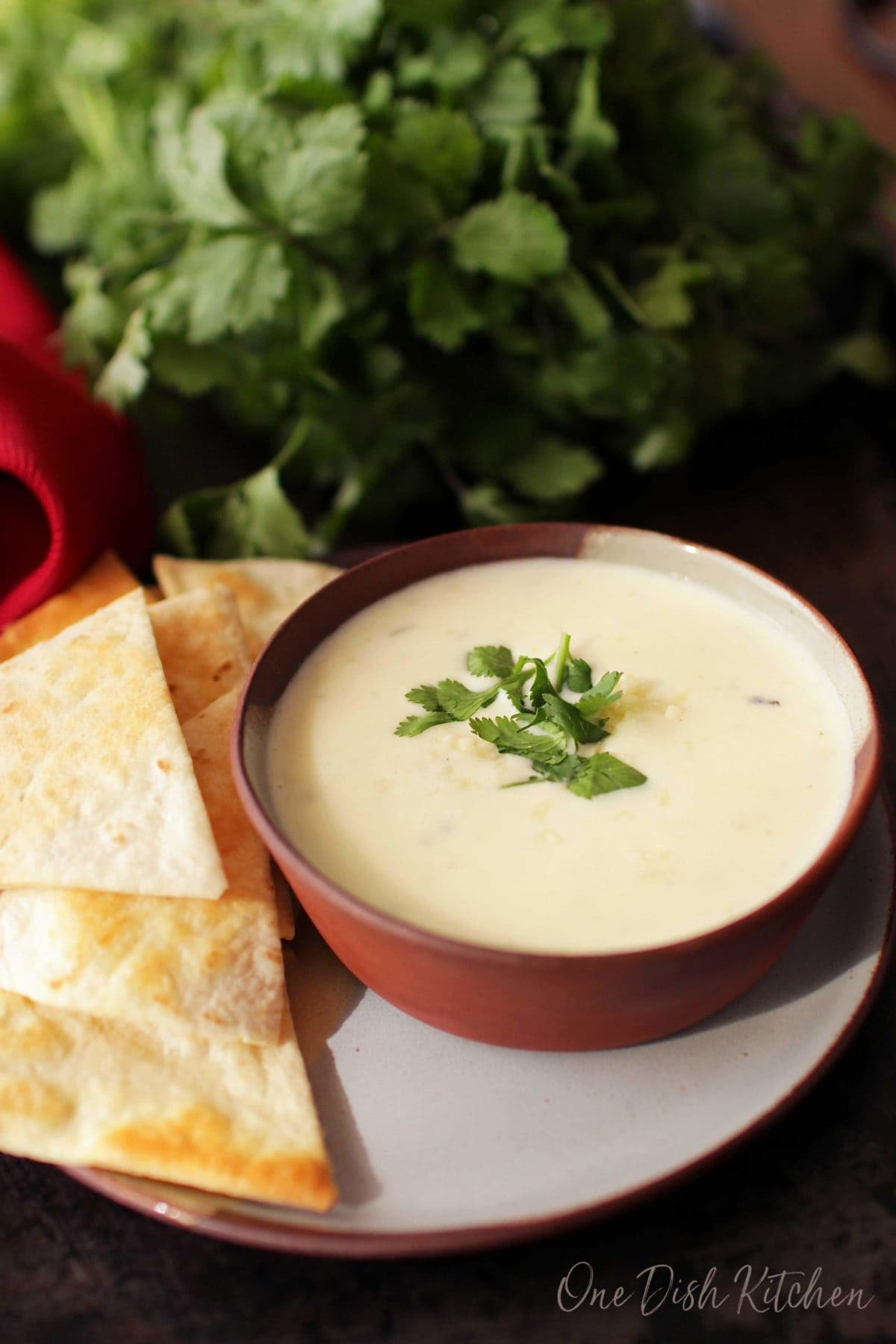 a bowl of white queso next to a plate of tortilla chips.
