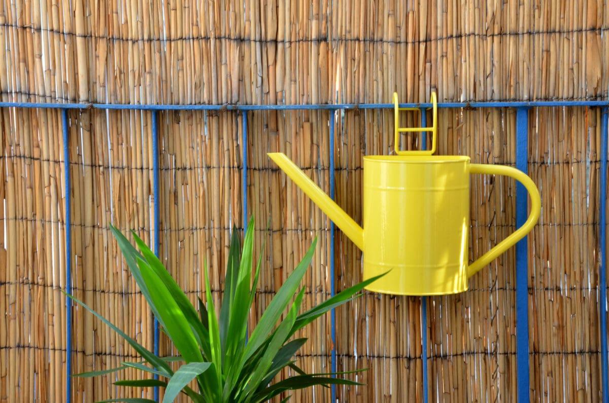 Balkon Sichtschutz Von Der Markise Bis Zur Rankpflanze Blauarbeit