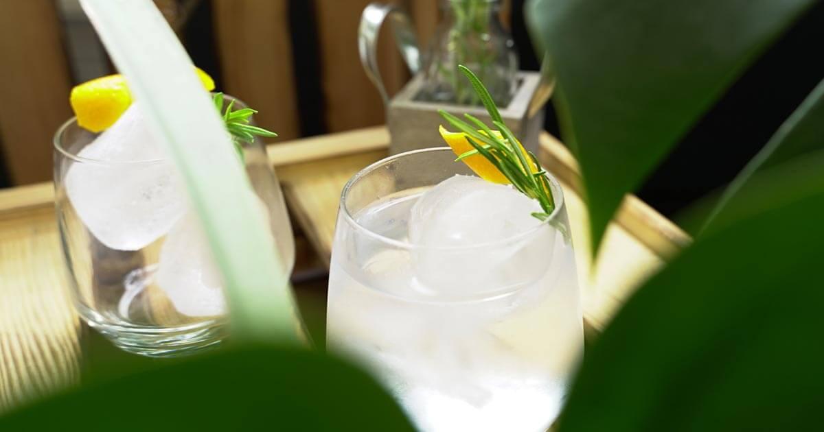 Der perfekte Gin Tonic - Teil 1