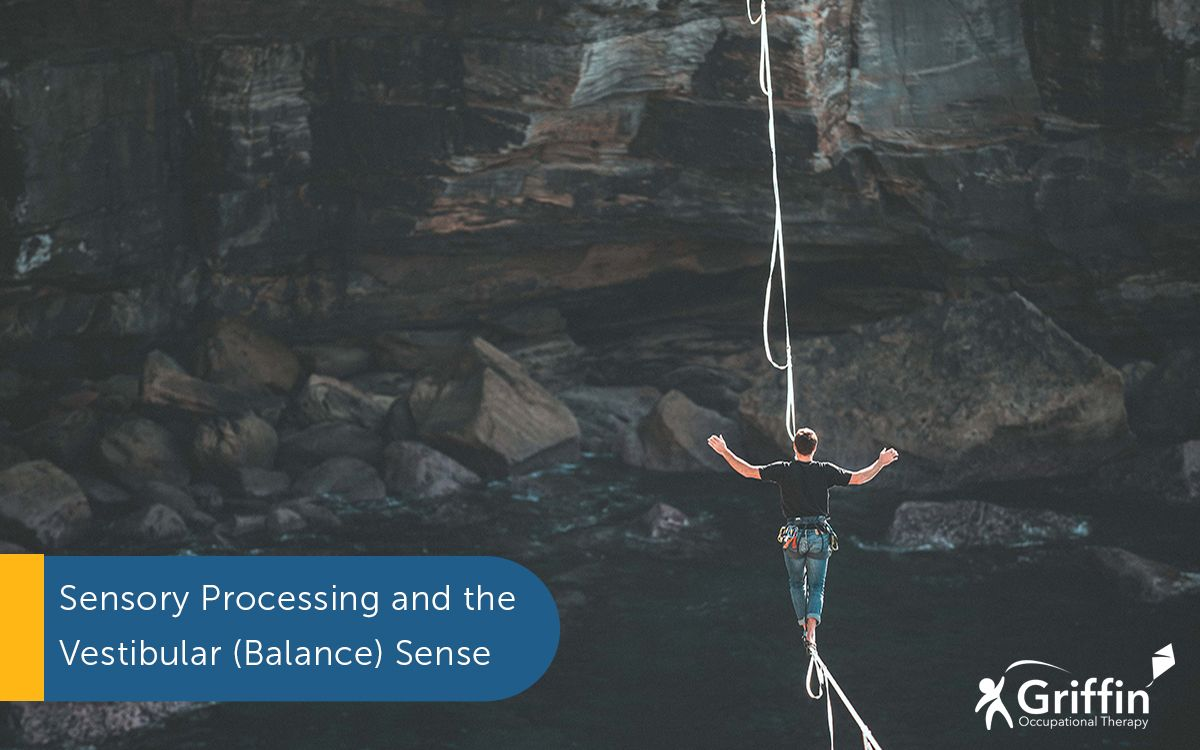 person walking on a high wire between two cliffs text saying What is the vestibular system