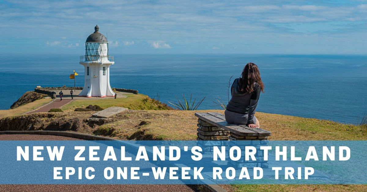 road trip guide to northland new zealnad