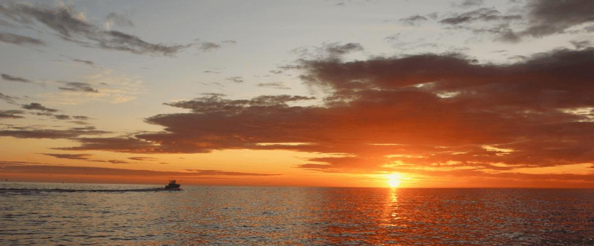 Cape Cod Fishing Charter Sunrise