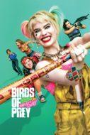 Birds of Prey ทีมนกผู้ล่า กับฮาร์ลีย์ ควินน์ ผู้เริดเชิด (2020)
