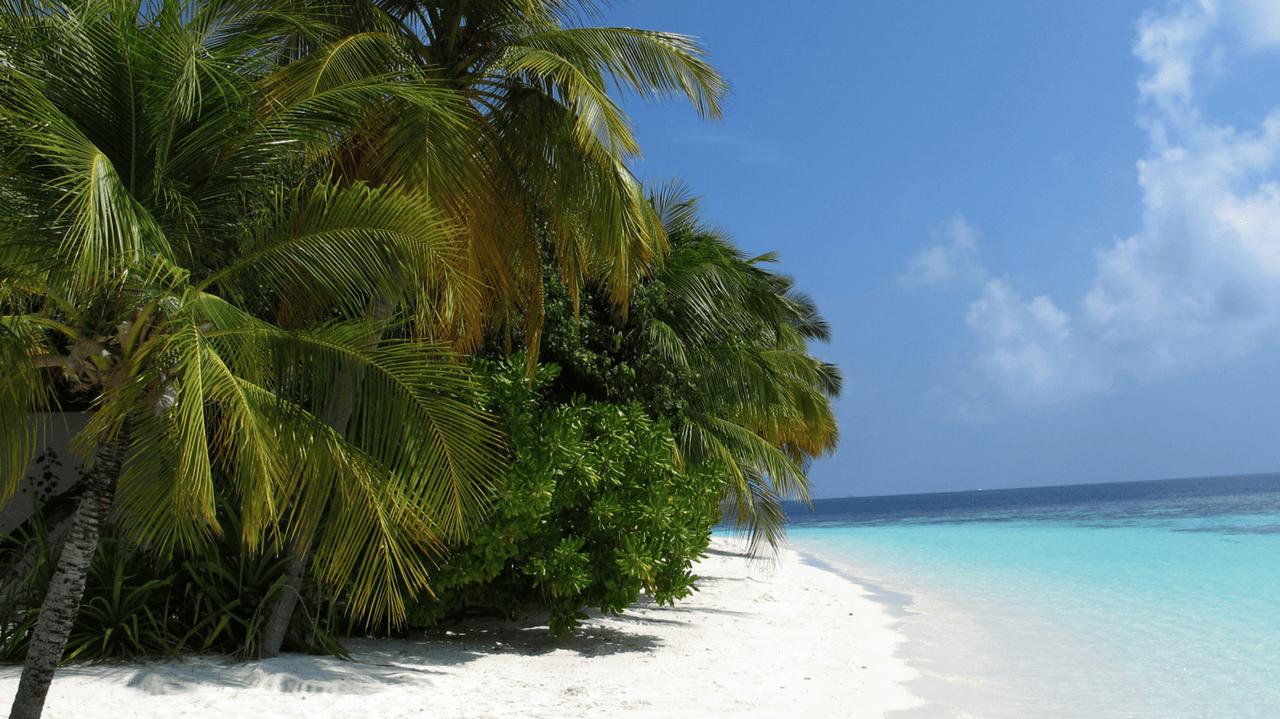 Amazing maldives for the win