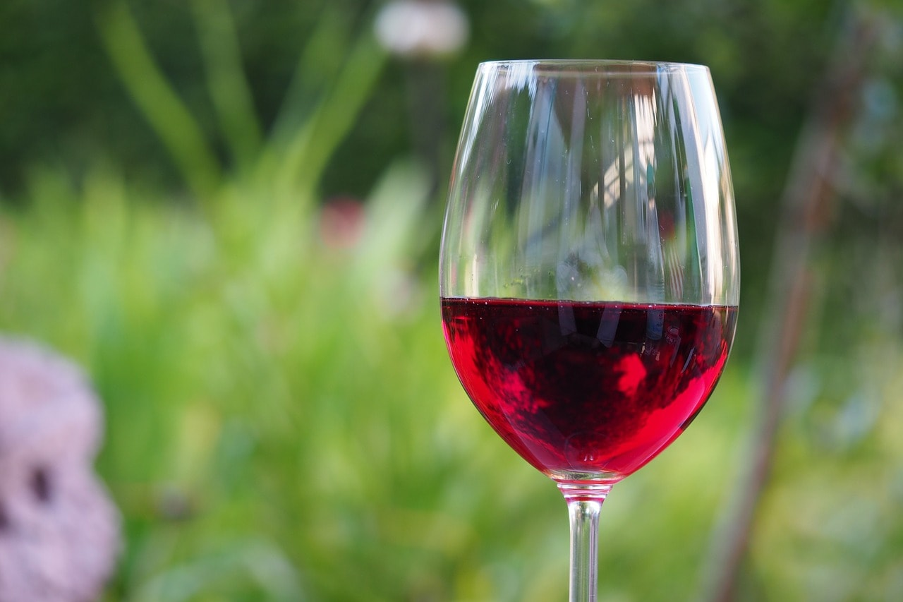 Each Spanish drinks an average of 21 liters of wine a year / Photo: WolfBlur (Pixabay)