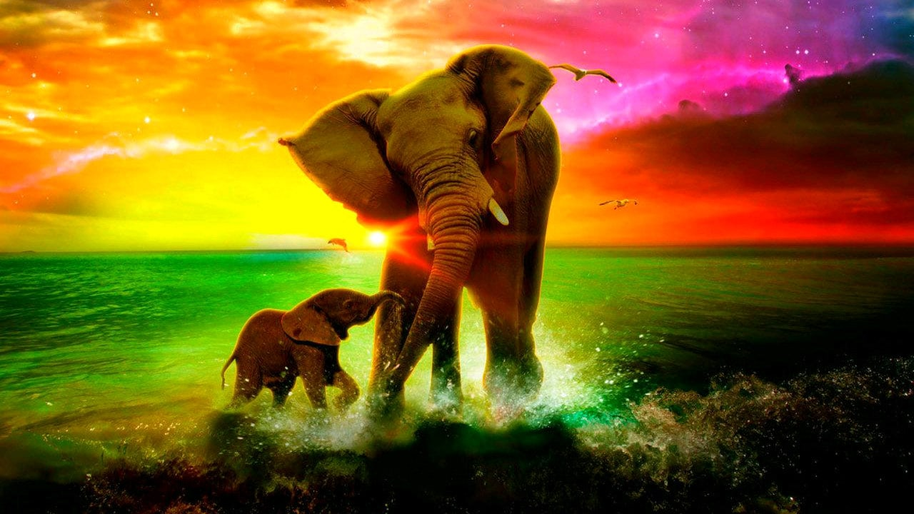 Mommy elephant and baby elephant in a rainbow sea