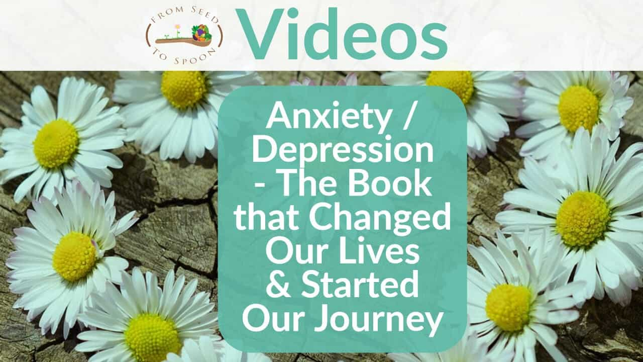 Anxiety _ Depression – The Book that Changed Our Lives & Started Our Journey