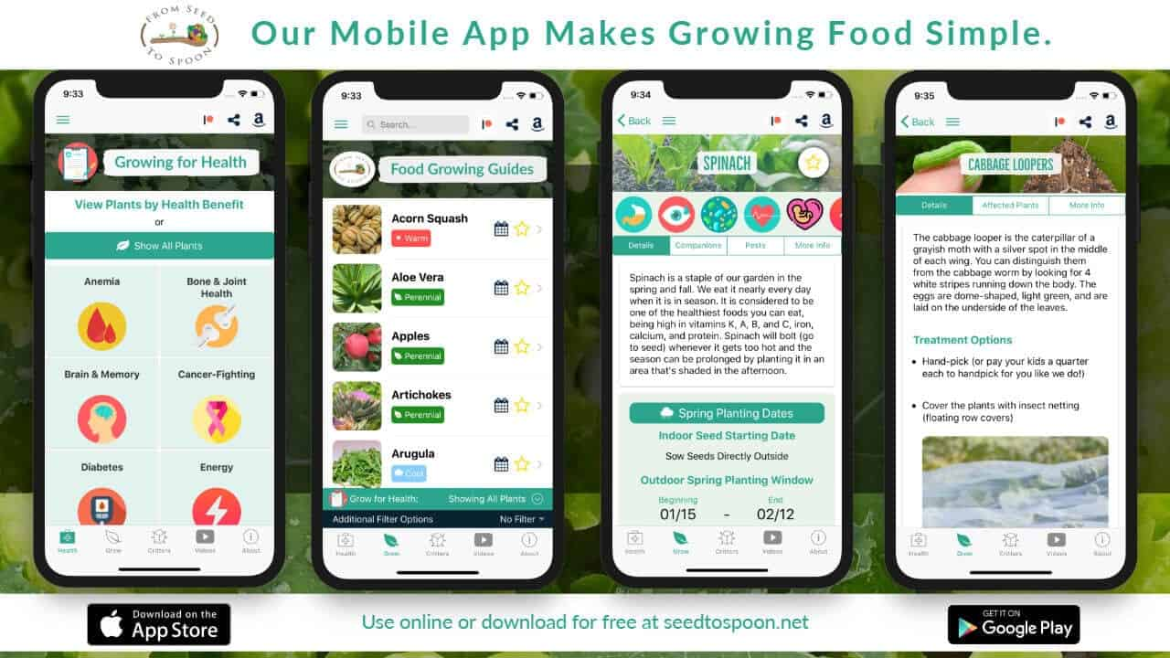 The From Seed to Spoon Garden Planner App Makes Growing Food Simple
