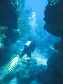 PADI Rescue Diver Wanted for SNUBA adventure at SNubA St Maarten