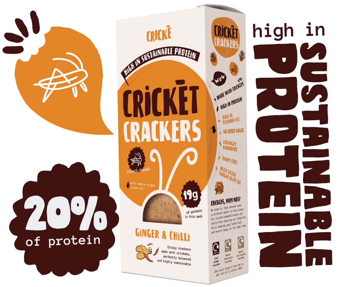 Cricke products are the best gateway to edible insects