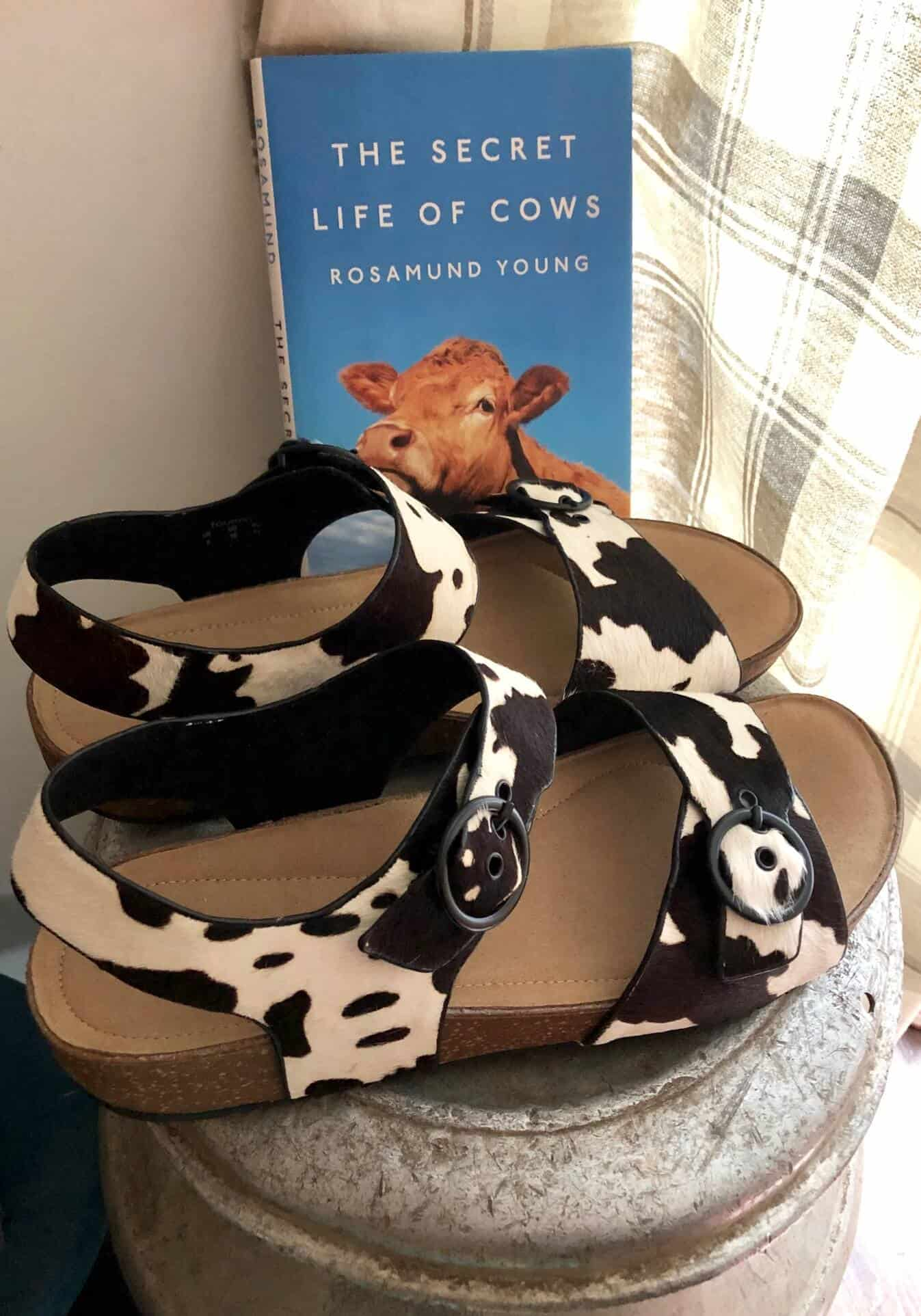 cow-print-tourist-sandals-from-Hotter