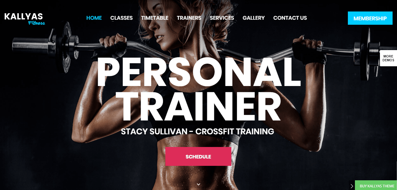 Vertigo – Fitness Gym Demo – Just another Kallyas Demo Sites site