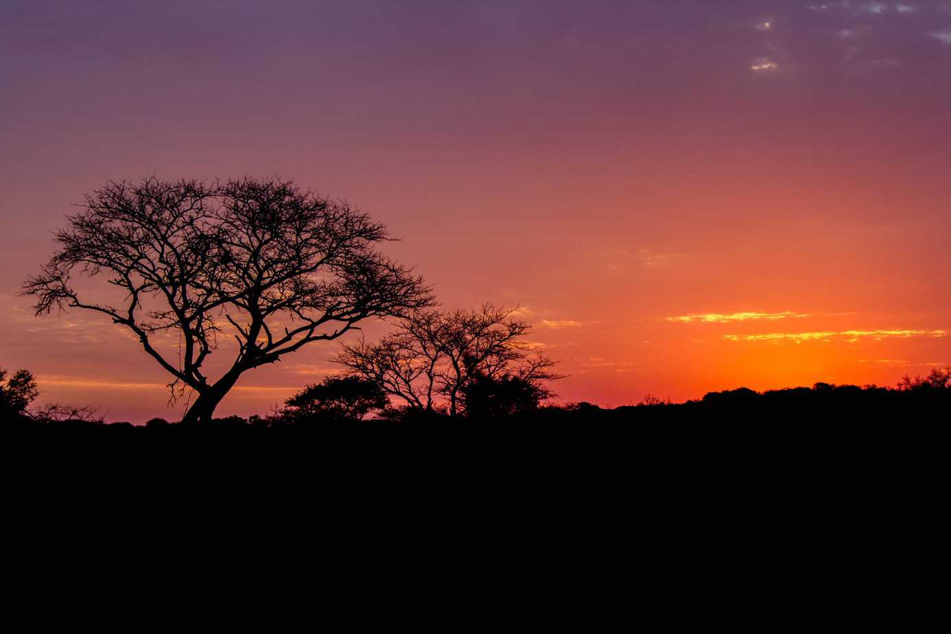Sunset @ Tembe Elephant Park. Photo: Håvard Rosenlund