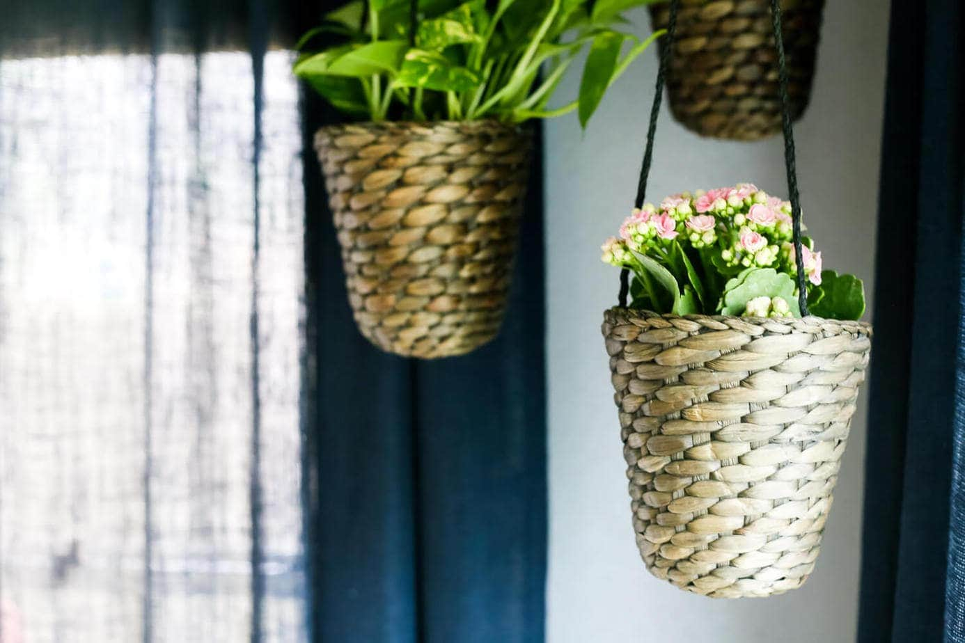 How to add simple hanging planters from IKEA to create this DIY indoor hanging planter display. It's a really simple idea, but makes a big statement in your room!