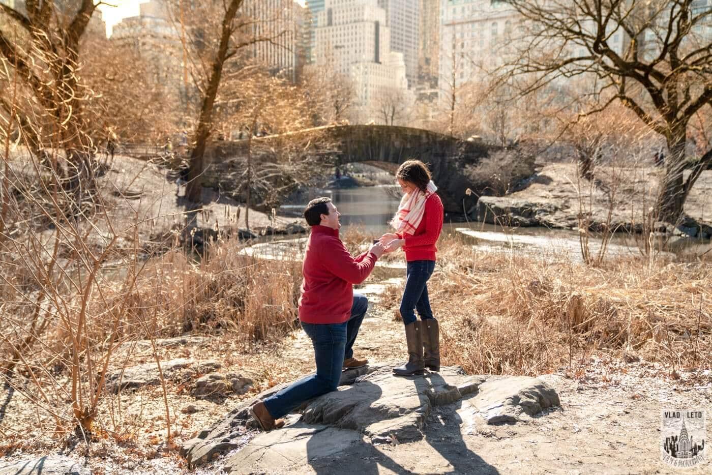 Photo 3 Gapstow bridge Marriage proposal in Central Park | VladLeto