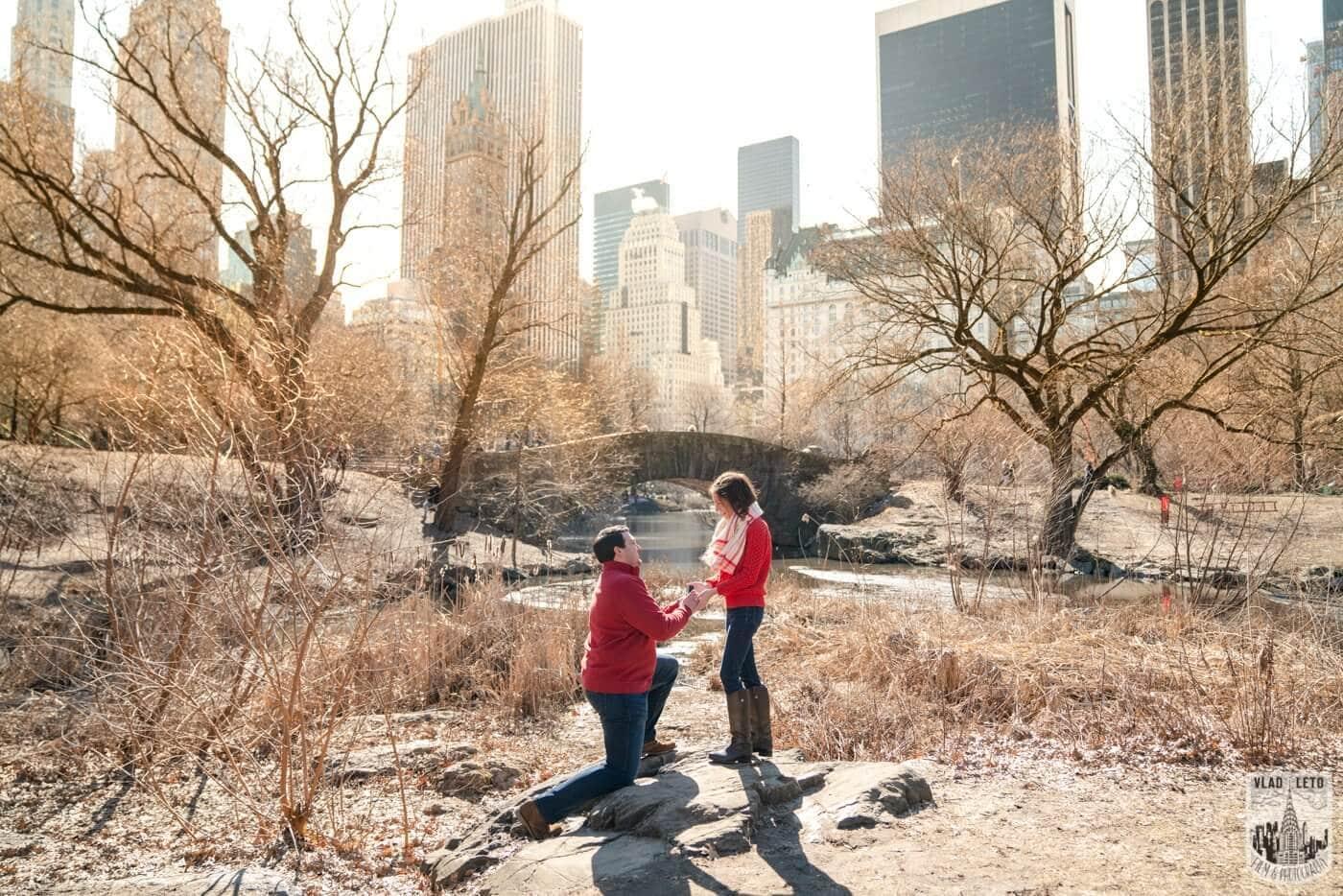 Photo Gapstow bridge Marriage proposal in Central Park | VladLeto