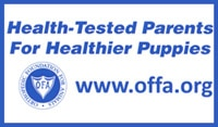 Health Tested Parents for Healthier Puppies - www.offa.org