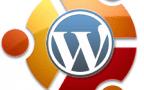Photo of Xenial Xerxus and WordPress – upgrading your VPS