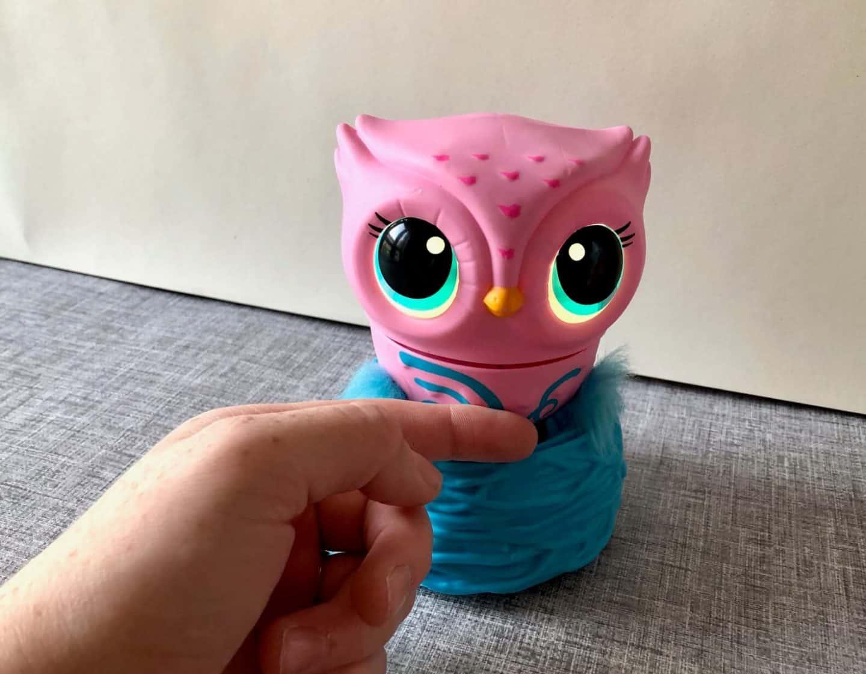 Stroking Owleez