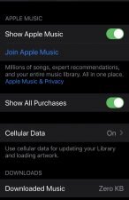 How To Fix Music Not Showing On iPhone After Update To iOS 13