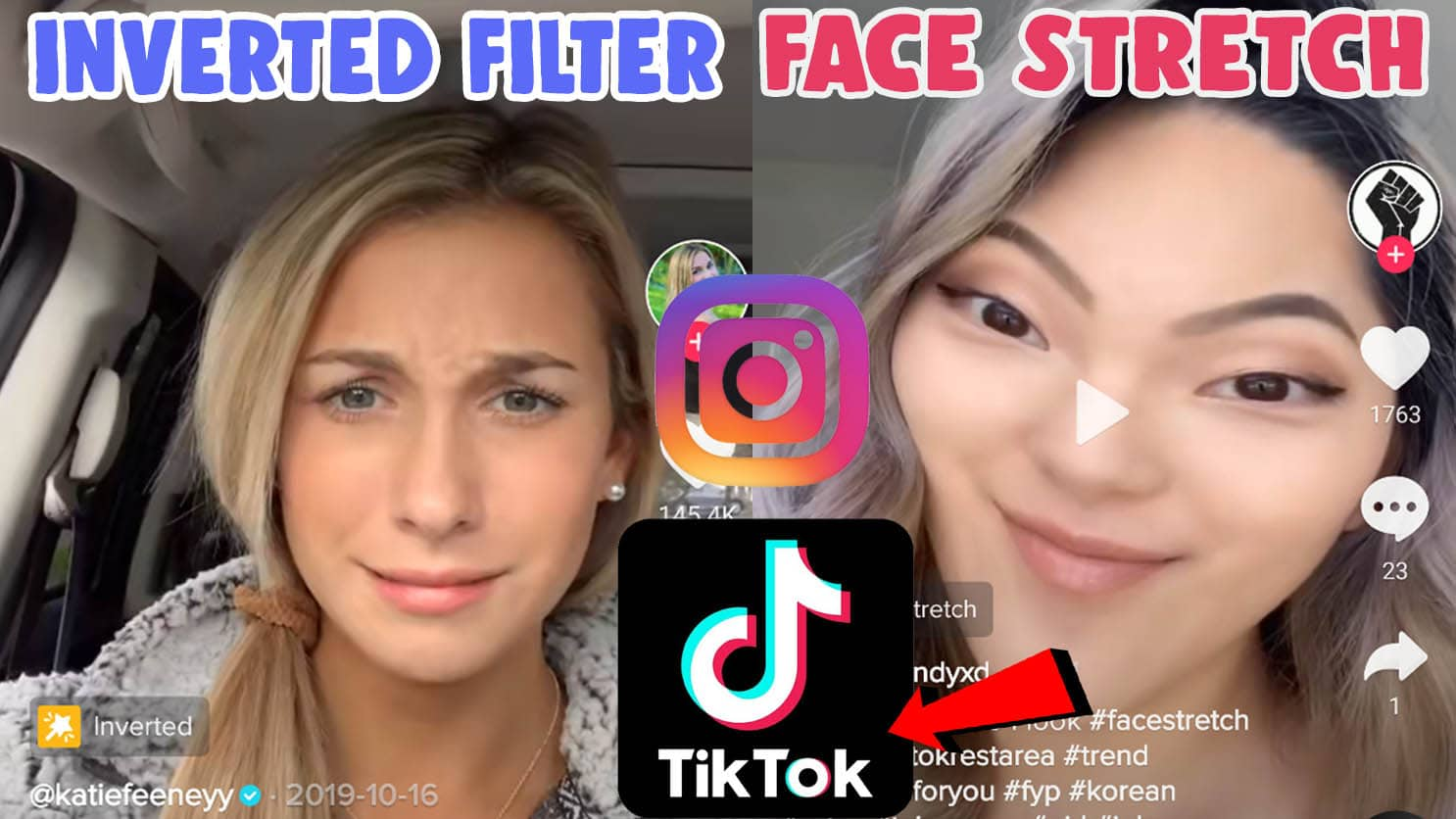 get and use inverted filter tiktok face stretch