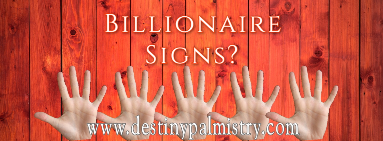 billionaire signs, business line in palm