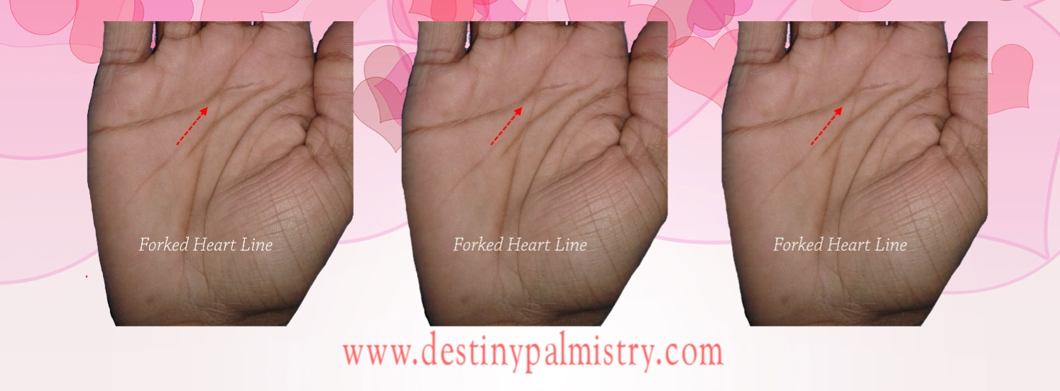 forked heart line