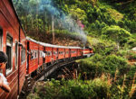 Sri lanka Train Tours75