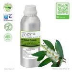 tinh-dau-tram-gio-cajeput-essential-oil-