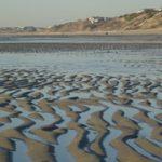 Beach Tidal Patterns