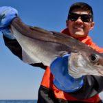Cape Cod Truro Provincetown Ground Fishing