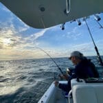 Light Tackle Cape Cod Fishing Charters