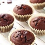Chocolate Coconut Flour Muffins