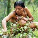 Products of the Yasuni
