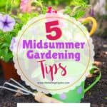 5 Ways to Spruce Up Your Midsummer Garden