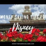 Money Saving Tips For Walt Disney World
