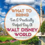 What To Bring For A Practically Perfect Day At Walt Disney World