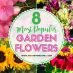 8 Popular Flowers for Your Flower Garden