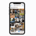 How To Crop And Trim Video On iPhone 11 - No Third-Party App Needed 15