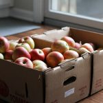 boxes of bruised apples