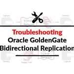 [Solved] Oracle GoldenGate: Bidirectional Replication Issue
