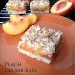 Peach Crumb Bars