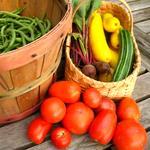 Közvetlen értékesítés – jobb lehetőségek a kistermelők számára