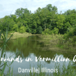 Vermilion County Camping | 3 Campgrounds Near Danville That Everyone Love