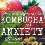 "Assorted fruit and herbs with the title ""Easy Way to Use Kombucha for Anxiety Issues"""